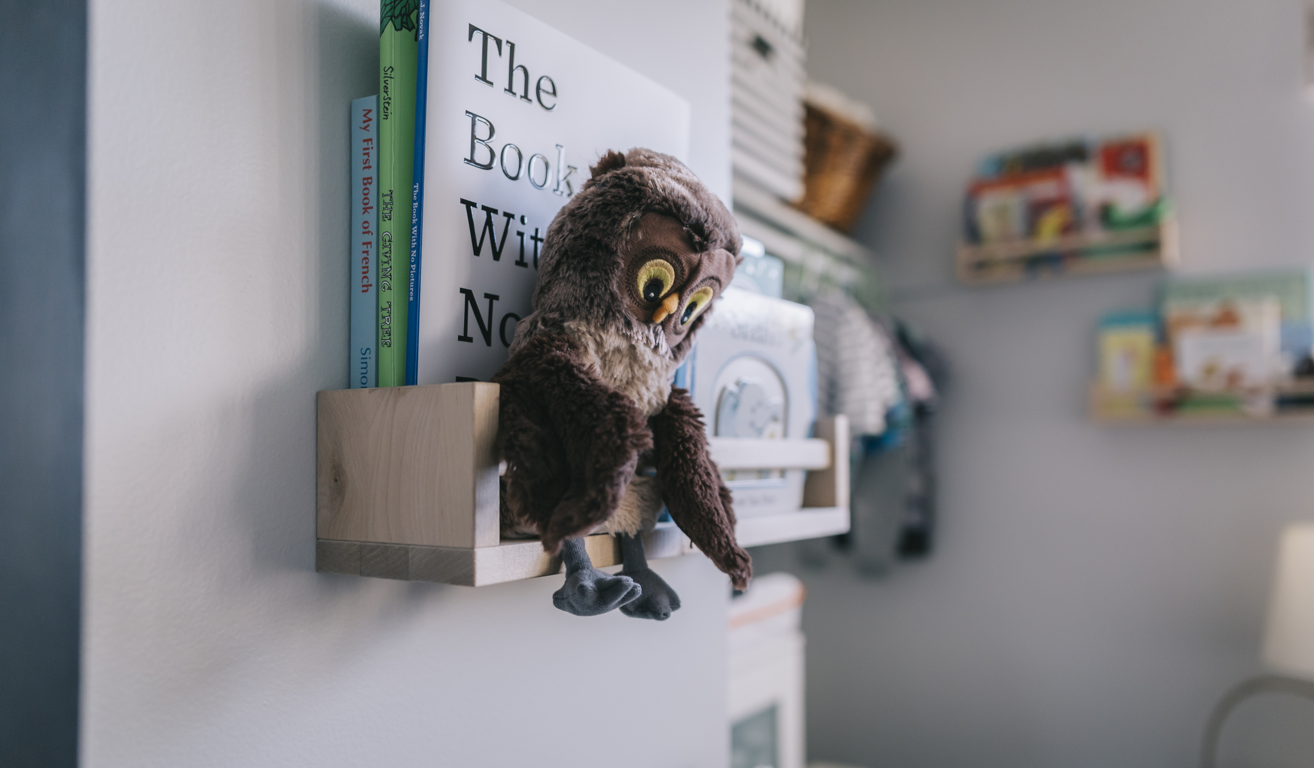 Bookshelf with owl and books- The Unfit Dad